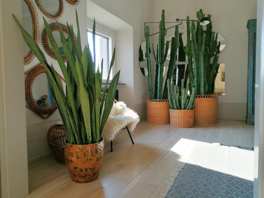 We love plants..your room