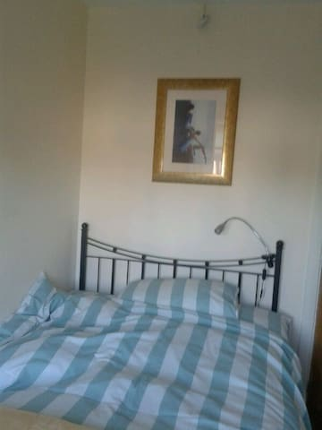 Cosy single room in Twickenham - Londen - Huis