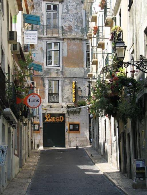 Room For Rent In Lisbon Portugal