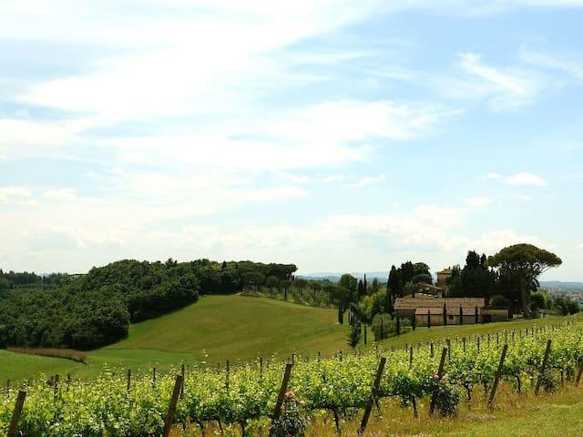 AGRITURISMO IL TURRICCHIO