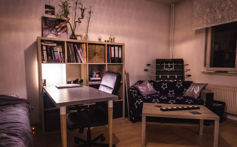 ☆ Nice Apartment - Parc de la Place de Haguenau ☆