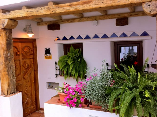 Artist's Rare Expressive home that sleeps 3 people - Canillas de Aceituno - Casa
