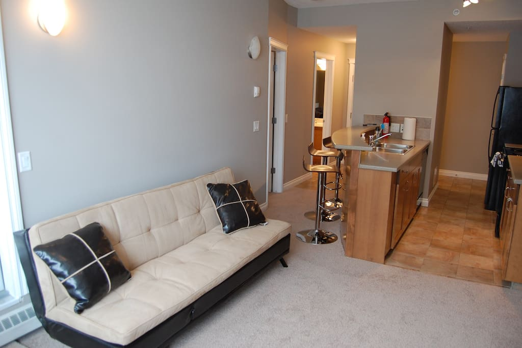 Living room couch to relax.  Also converts to bed for 1 adult or 2 small children.