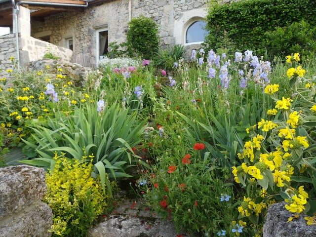 Magnifique maison en pierre  - Lavardac - Hus