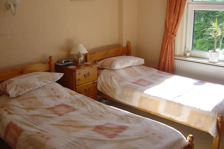 Bright Twin Room - Okehampton