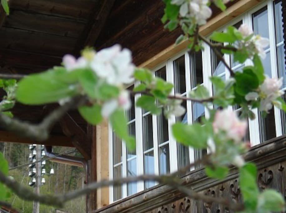 Laube Obergeschoss