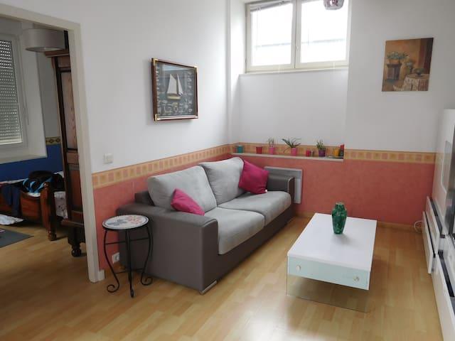 Appartement 2 pièces  quartier historique Lescar