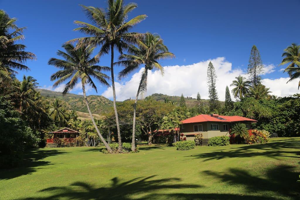 Beachfront Rental Properties In Hawaii
