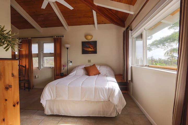 Ocean Breeze room, with queen bed and ocean views.