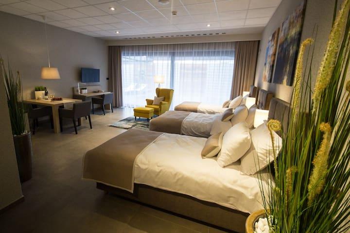 SportHotel & SPA Apartament Premium 2 - Gliwice - Apartament