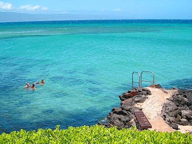 Ocean View Condo, West Maui Resort - Lahaina - Appartement