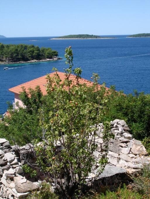 Blick auf Haus und Meer