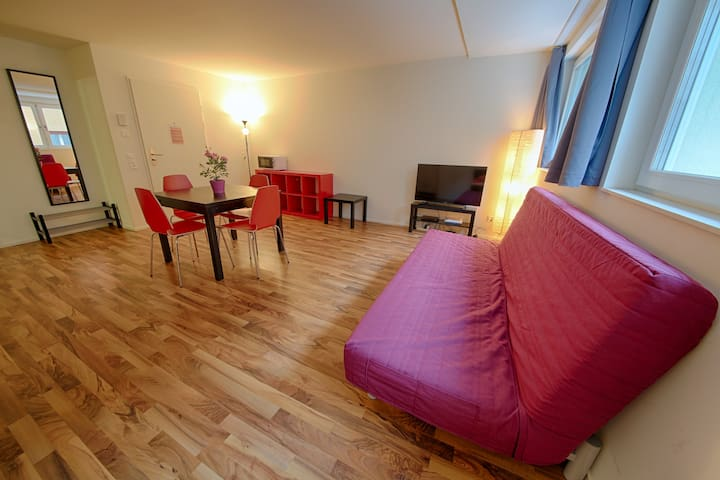 Badenerstrasse IV Apartment