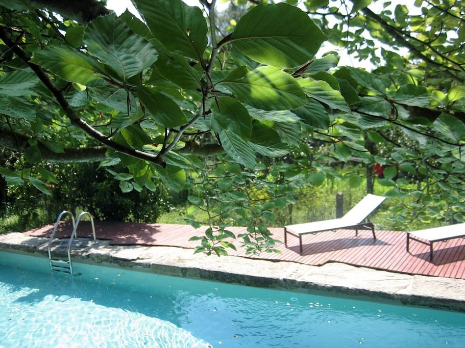 Portuguese Country Cottage W Pool Houses For Rent In Romarig Es Viana Do Castelo District