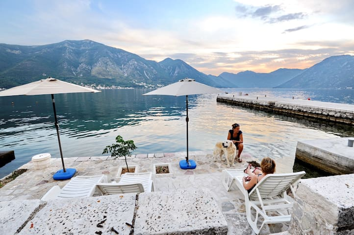Studio Kriva Ulica 4 - Kotor - Appartement