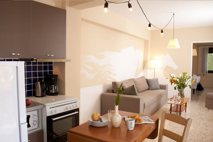Live in Athens #10  | Psirri - Athene - Appartement