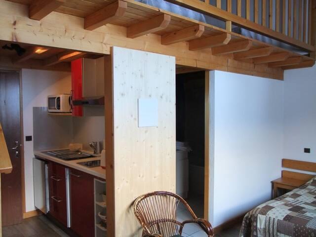 Studio montagnard, départ des pistes et randonnée - Sixt-Fer-à-Cheval - Condominio
