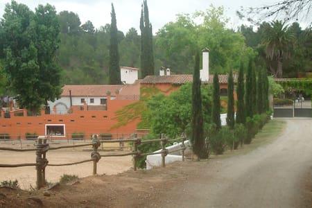 Masía entre viñedos en el Penedès. - Sant Quintí de Mediona - Вилла
