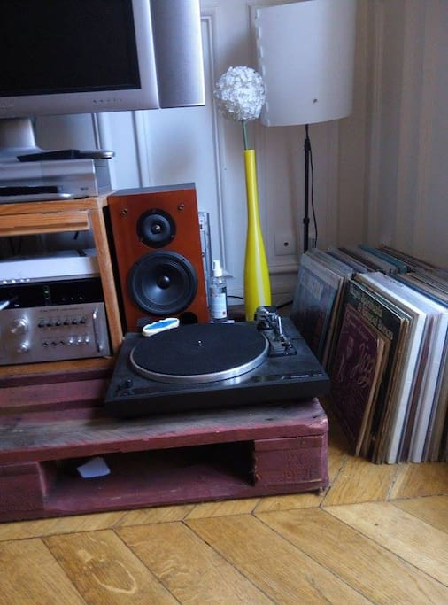 vinyle collection and table turner