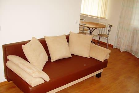 Уютная квартира в центре Перми - Perm