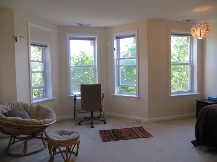 Spacious, well lit room with 4 windows