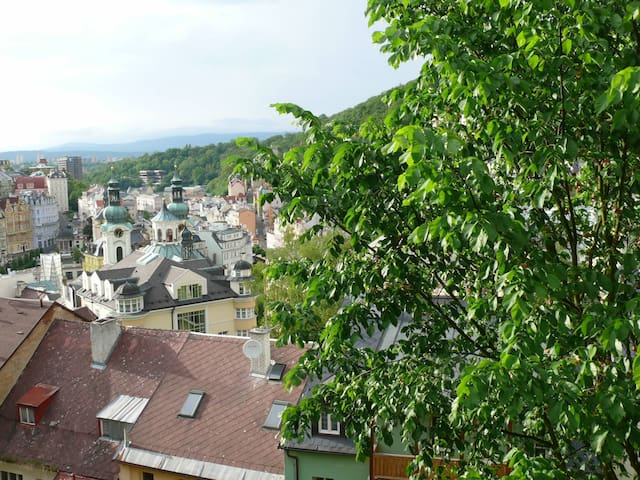 Wow! What a wonderful view! Big kitchen. For 4 p. - Karlovy Vary - Apartamento