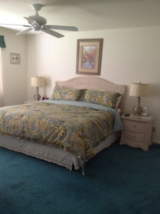 Master bedroom has a king bed, master bathroom and walk-in closet.