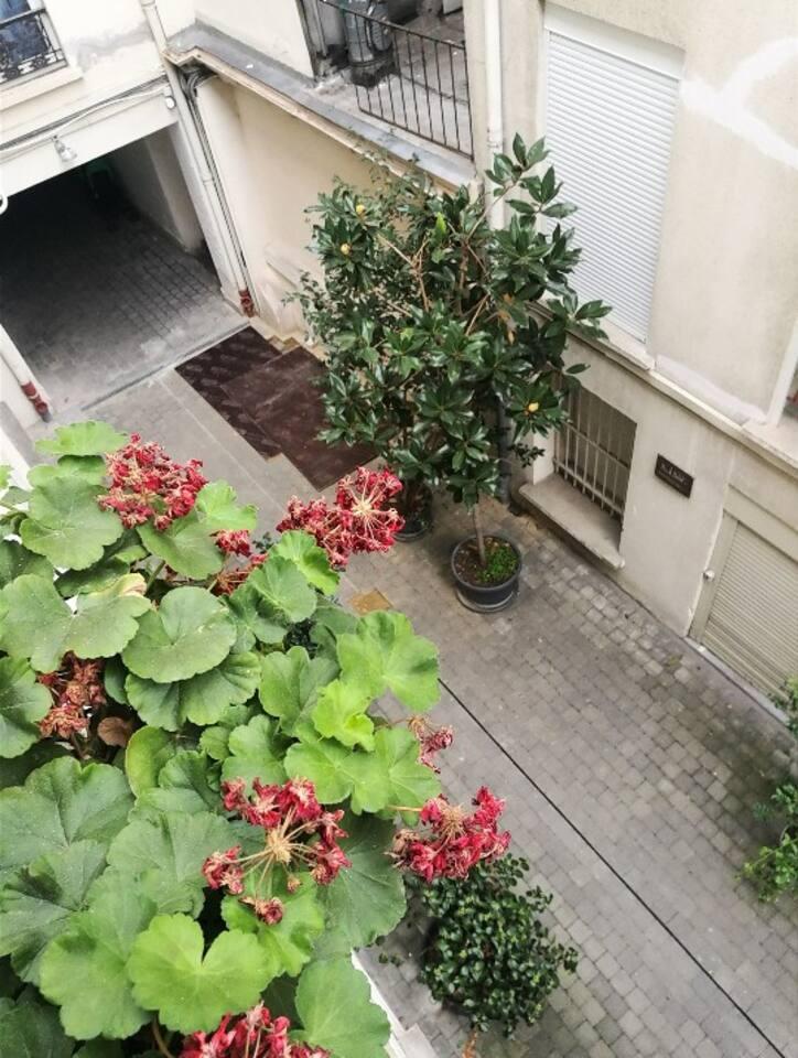 WINDOW VIEW #studio #paris #private #quiet