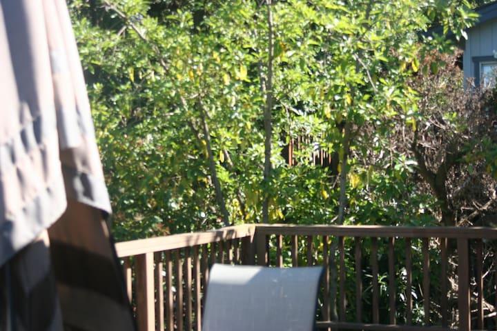 Sunny room - Redwood City - Apartment