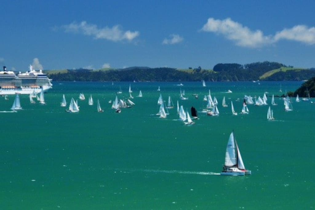 Sailing Regatta viewed from Property