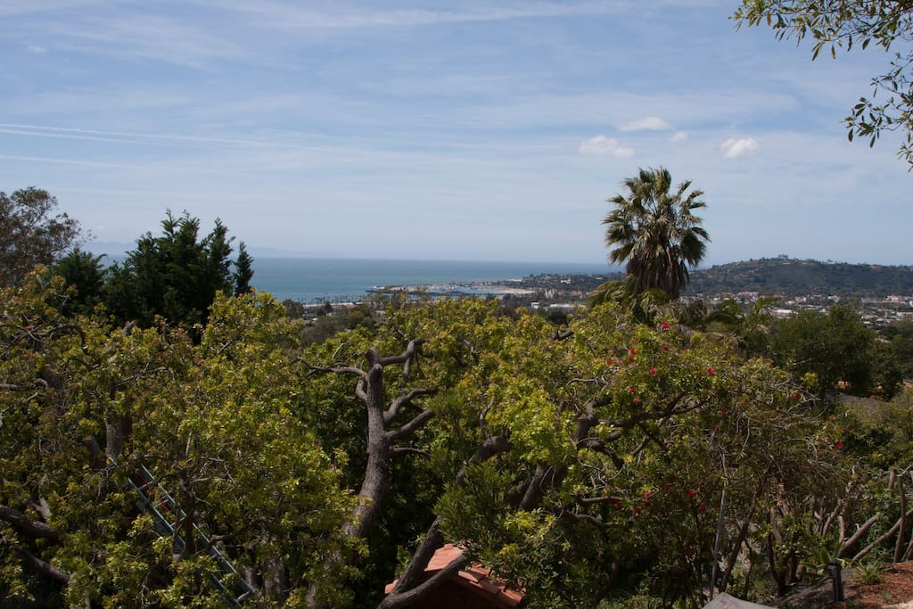 Views from the top of our property into the Santa Barbara harbor