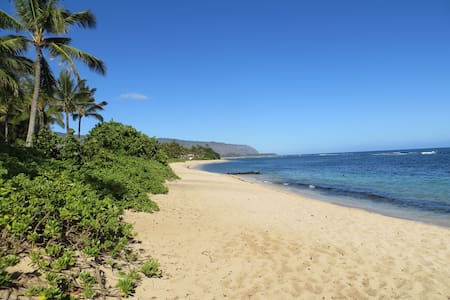Beach Across The Street, Beautiful. - Waialua