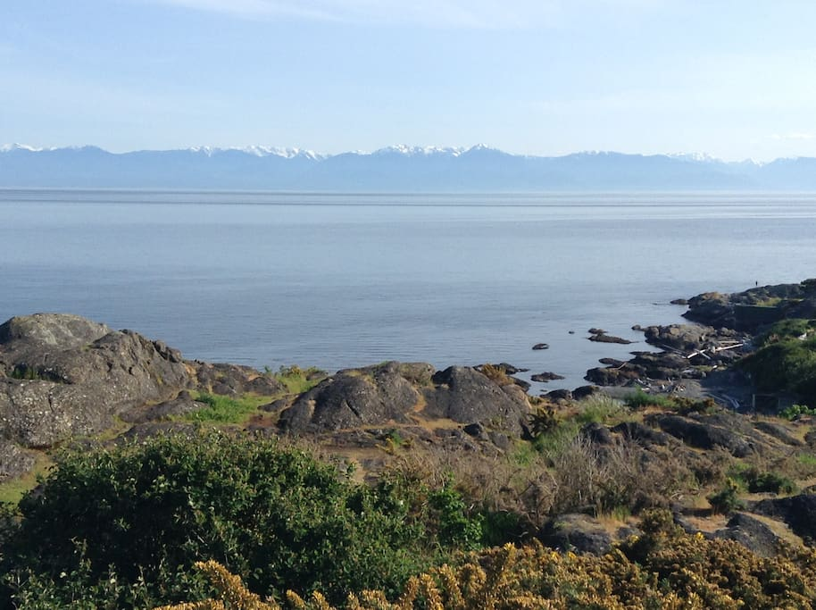 View the Salish Sea and Majestic Olympic Mountains as you walk out the door!