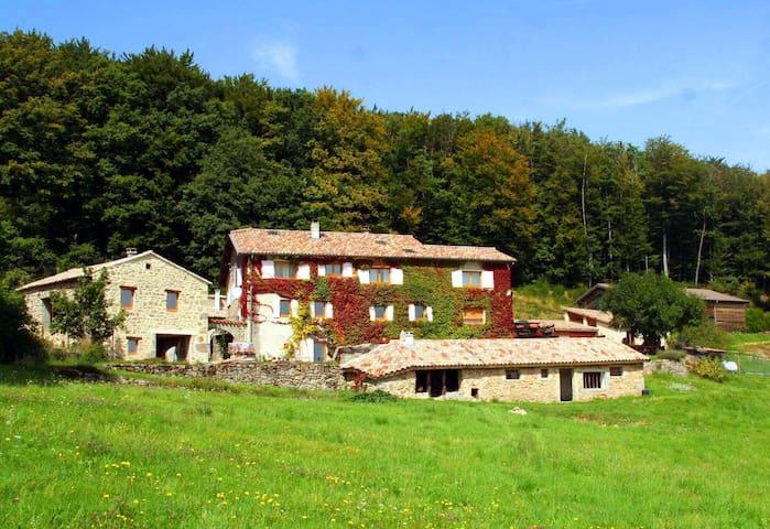 Gîte Le Grand Tilleul - Ecolieu Grain&Sens