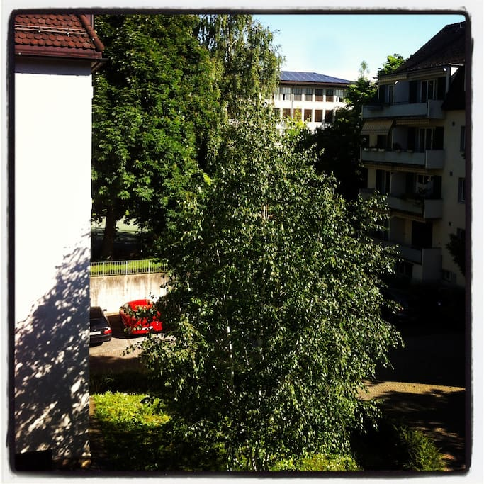 Sunny and modern apartment in quiet neighbourhood in the heart of zurich at the lake next to Kunsthaus/Bellevue/Seefeld