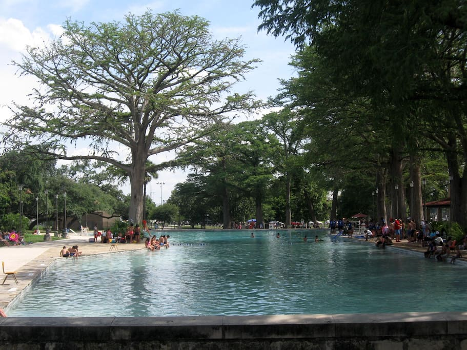 San Pedro Springs' beautiful Cypress and Oak tree-lined public swimming pool - Directly across the street!!!