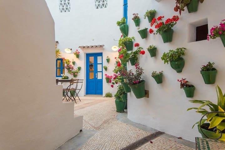 Casa Juderia hasta 10 personas, centrico Vejer - Vejer de la Frontera - Haus