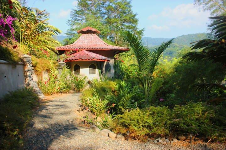 Hidden Villa, private 51 ft  pool - Uvita - Villa