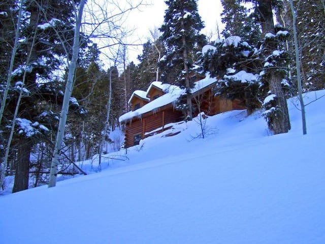 Cozy posh log cabin in So. Colorado