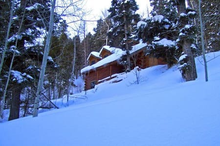 Cozy posh log cabin in So. Colorado - Antonito
