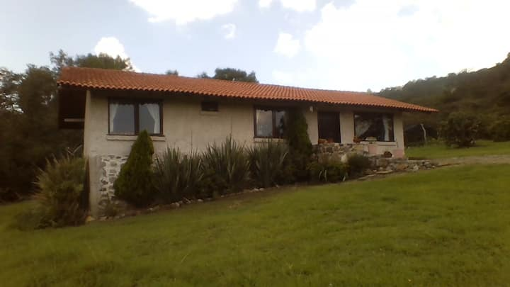 Lili's home