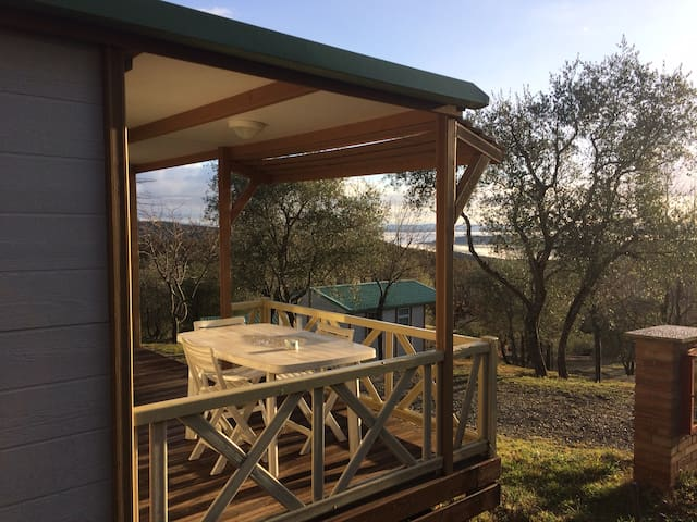 Chalet in olive groves in the heart of Tuscany