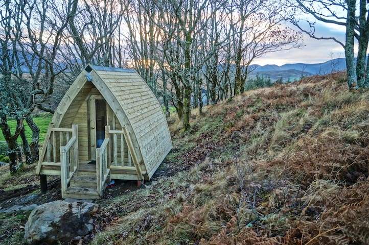 WESTPORT Eco glamping in the Oak woods. No. 3.