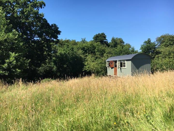 Watermill Meadow Shepherd's Hut.