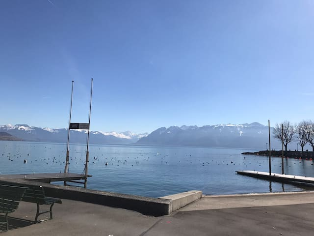 Belle Appartement ouchy au Bord lac 2 pas - Lausanne - Apartmen