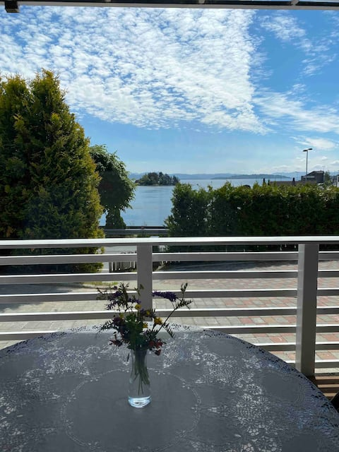 Newly renovated apartment with sea view and parking