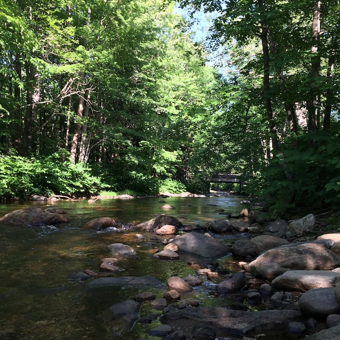 Sawmill river on property