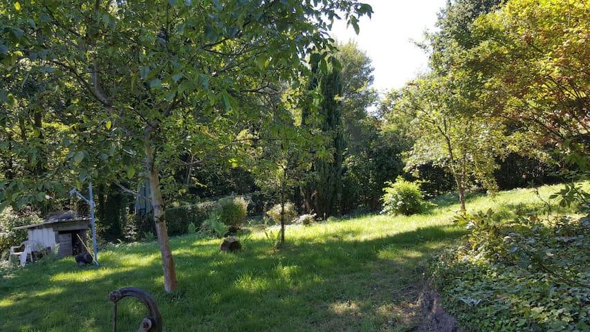 Ferien im Pfälzer Wald - Rodalben - Casa