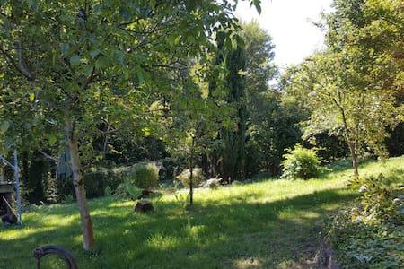 Ferien im Pfälzer Wald - Rodalben - Σπίτι