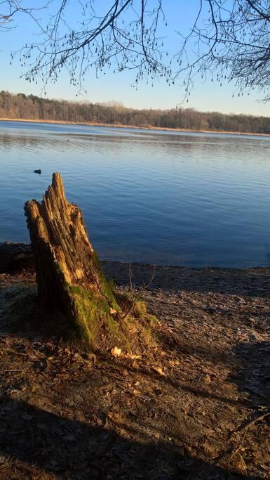 Sacrower See (5 Min. entfernt)